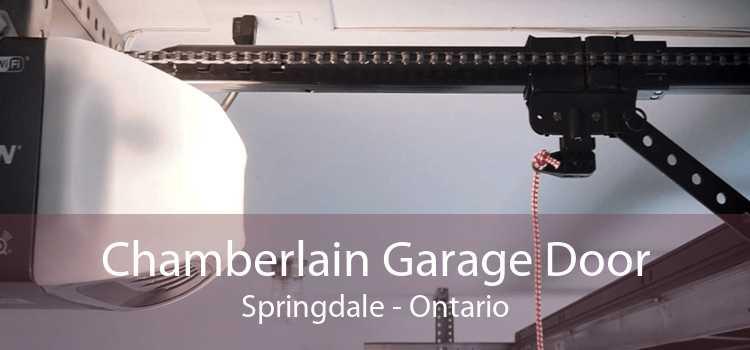 Chamberlain Garage Door Springdale - Ontario