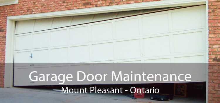 Garage Door Maintenance Mount Pleasant - Ontario