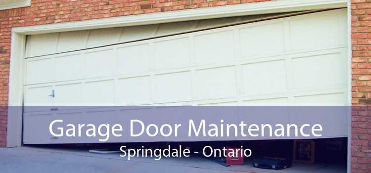 Garage Door Maintenance Springdale - Ontario
