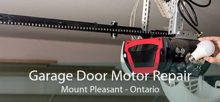 Garage Door Motor Repair Mount Pleasant - Ontario