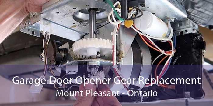 Garage Door Opener Gear Replacement Mount Pleasant - Ontario