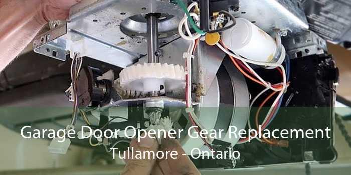 Garage Door Opener Gear Replacement Tullamore - Ontario