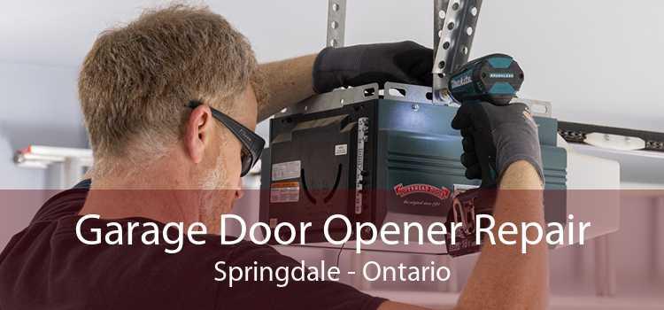 Garage Door Opener Repair Springdale - Ontario