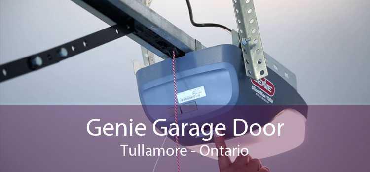 Genie Garage Door Tullamore - Ontario