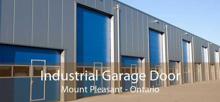 Industrial Garage Door Mount Pleasant - Ontario