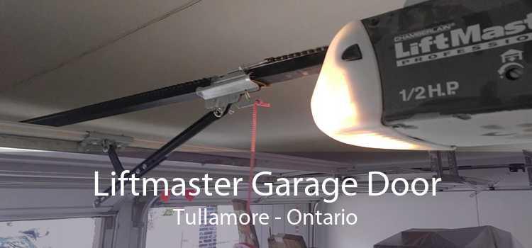 Liftmaster Garage Door Tullamore - Ontario