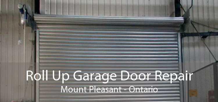 Roll Up Garage Door Repair Mount Pleasant - Ontario